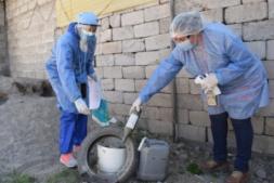En 15 días, se confirmaron solo 3 nuevos casos de dengue